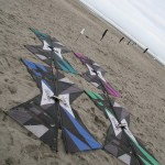 Team kites on display